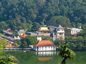 kandy-day-tour-in-kandy-201591